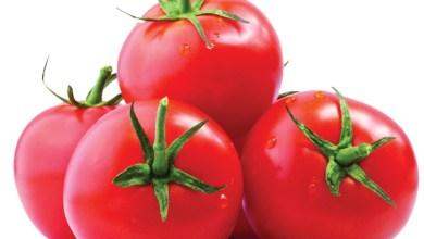 صورة تعرف على فوائد الطماطم الصحية و قيمتها الغذائية