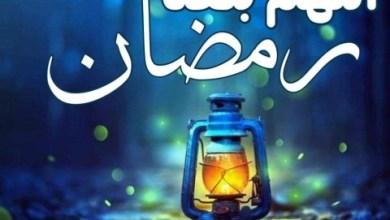 Photo of أجمل العبارات عن بركة رمضان والمغفرة والبركة