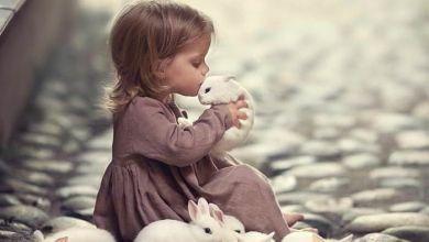 صورة تأثير الحيوانات الأليفة على سلوك الطفل