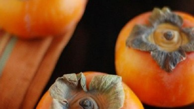 Photo of فوائد الكاكا للحامل والجنين قيمة غذائية متكاملة