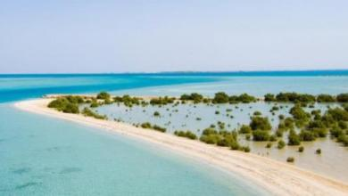 Photo of أجمل 6 معالم سياحية في جزيرة الفرسان بجازان