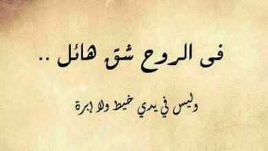 Photo of 55 عبارة من أجمل العبارات القصيرة عن الحياة