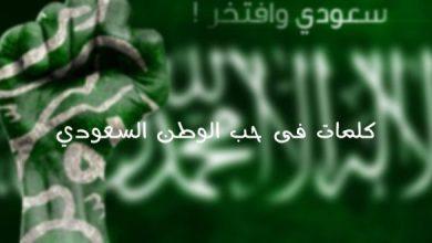 Photo of أجمل الصور الوطنية السعودية، عبارات في حب السعودية