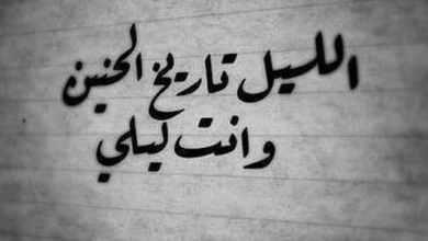 Photo of أجمل 7 عبارات قصيرة عن الحب والشوق والحنين