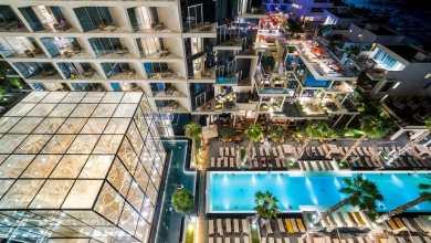 صورة أهم فندق في دبي على نخلة جميرا