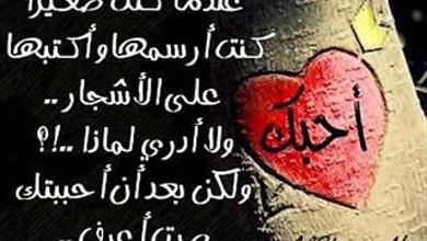 Photo of ابيات شعر جديدة رومانسيه عن الحب , قصائد حب رومانسية مكتوبة