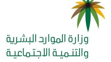 Photo of سلم رواتب المعلمين 1441 السلم الجديد مع البدلات