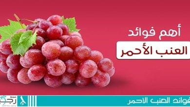 Photo of فوائد العنب الأحمر