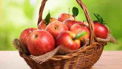 صورة تجربتي مع التفاح على الريق