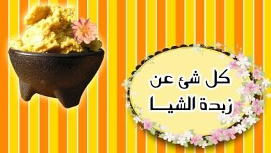 Photo of زبدة الشيا _ الفوائد والأضرار وأهم الوصفات السحرية للشعر والجسم
