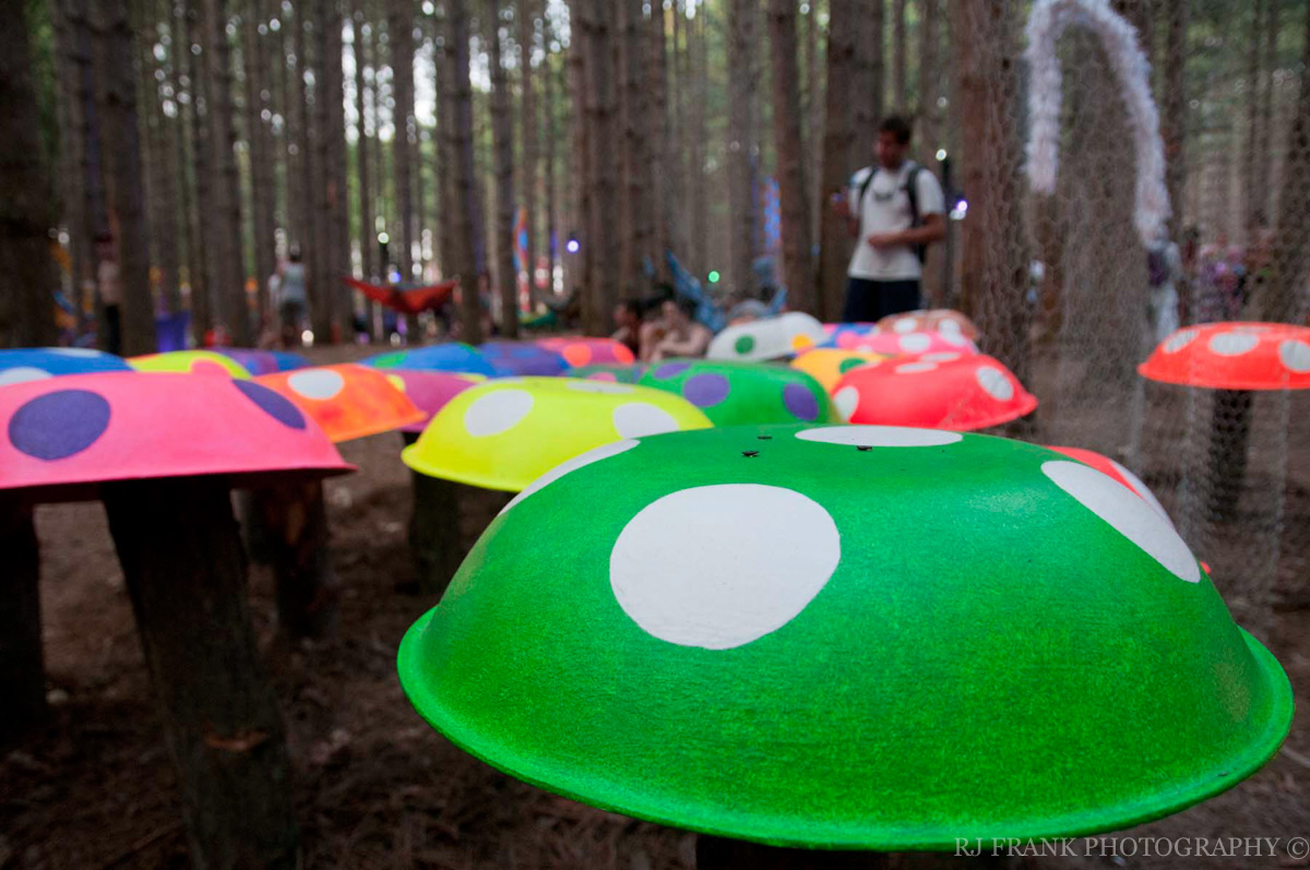 ElectricForest_RJFPHOTO_07_12-28