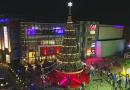 "Unveiling the Tallest Christmas Tree & Launch of ""World of Christmas"" | Phoenix Marketcity | Bangalore"