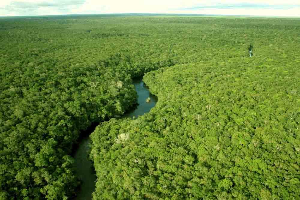 floresta-amazonica-a-maior-do-mundo