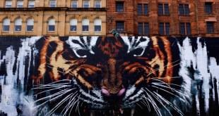 уличное искусство красивое граффити