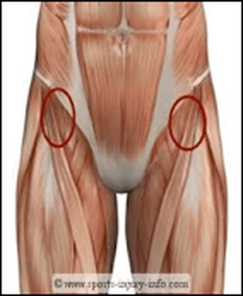 arm bones and muscles diagram 2004 dodge 2 7 engine hip flexor muscle strain | roland jeffery physiotherapy