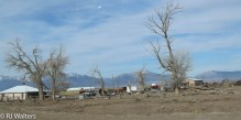 New Mexico Countryside-11