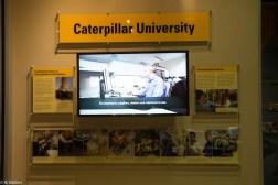 Catepillar-9