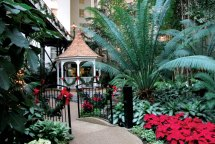 Country Christmas Gaylord Opryland Hotel
