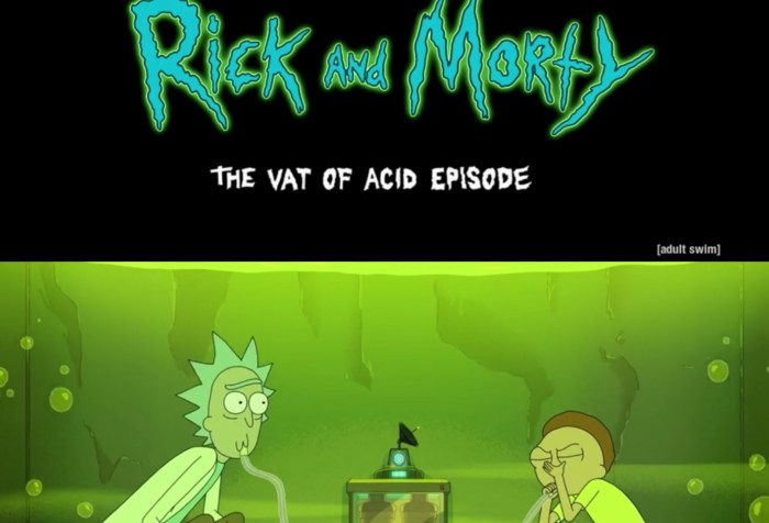 "Rick and Morty Season 4 Episode 8 ""The Vat of Acid Episode"""