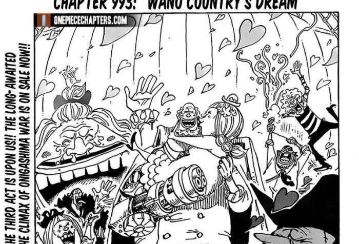 One Piece Chapter 993 Cover Page