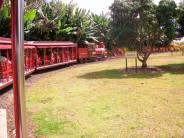 Hawaii Vacation - Dole Plantation Pineapple Express