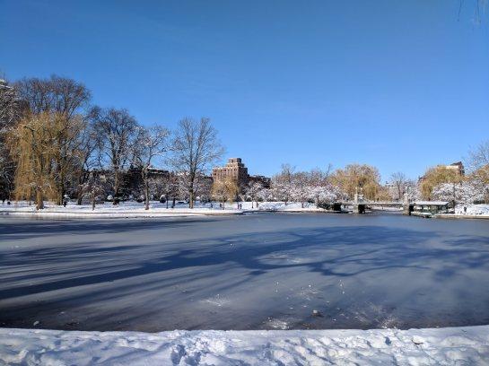 Boston Public Garden - Frozen Pond