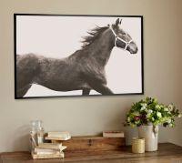 Vintage Horse Framed Print by Jennifer Meyers | Pottery Barn