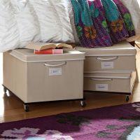 Rolling Underbed Storage Frame | PBteen