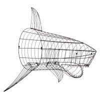 Shark Wall Decor | PBteen