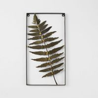 Metal Fern Wall Art - Feather | west elm