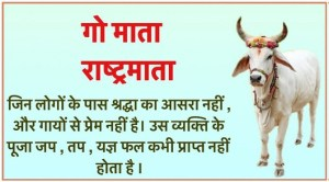 Save The Cow Shayari in Hindi Photo images Picture Pics
