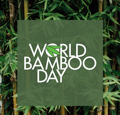 World Bamboo Day Photo images Poster Drawing Logo
