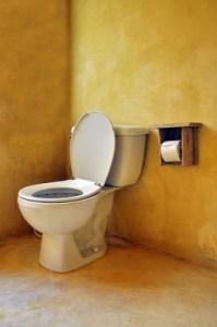 アサーション トイレ貸してください