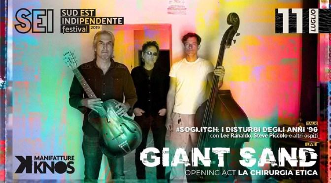 Sud Est Indipendente, giovedi 11 incontro con Lee Ranaldo (Sonic Youth) e live dei Giant Sand!