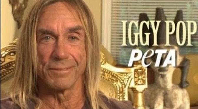 IGGY POP e NICK CAVE uniti per la campagna animalista di PETA