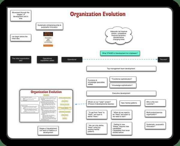 Linear view of organization evolution