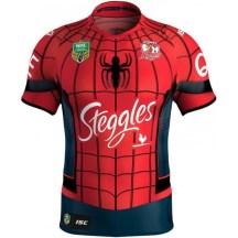 Superhero/Spiderman