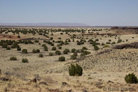 Les paysage de Wupatki, lieu de culture de maïs et autres plantes