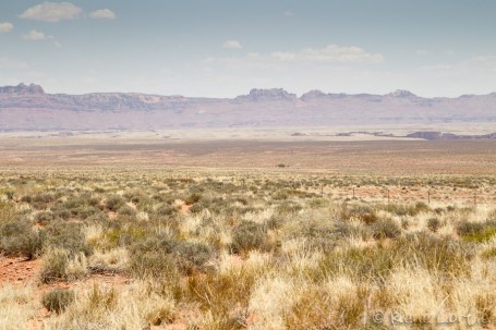 Vue de la plaine (nord-est) avant d'entrer dans la Kaibab National Forest