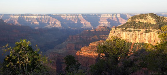 Pano du Grand Canyon au lever de soleil sur le North Rim