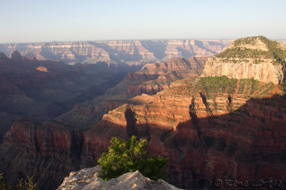 North Rim du Grand Canyon