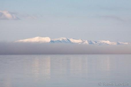 Brune matinale sur le lac Yellowstone près du camping Fishing Bridge