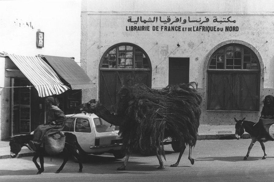 Scène de rue à Safi