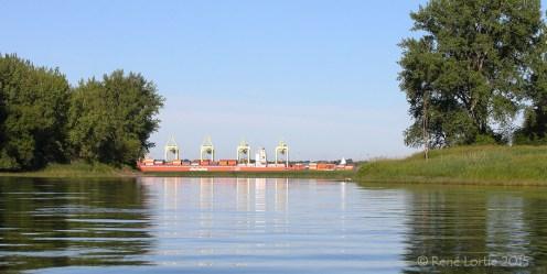 Port à container