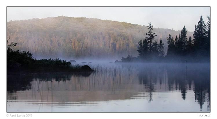 Brune matinale sur le lac Rossi