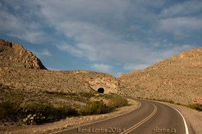 Sur la route de Rio Grande Village. C'est là que j'ai aperçu le troupeau de mouflons du désert.