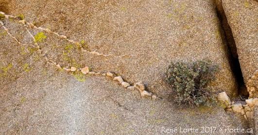 Strates de roche dans la formation rocheuse au Joshua Tree National Park
