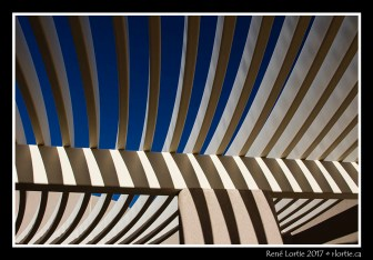 Visitor Center Saguaro NP
