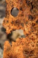 Figure de rouille