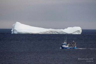 L'iceberg de Bonavista avec bateau pour en saisir la dimension (celui-ci était assez loin du iceberg)